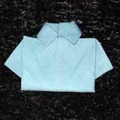 napkinshirtfoldinginstructionstn
